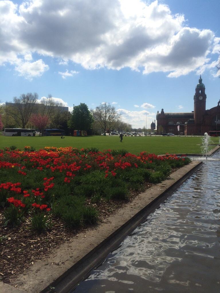 Tulpenbeet Reisinger Anlagen Wiesbaden