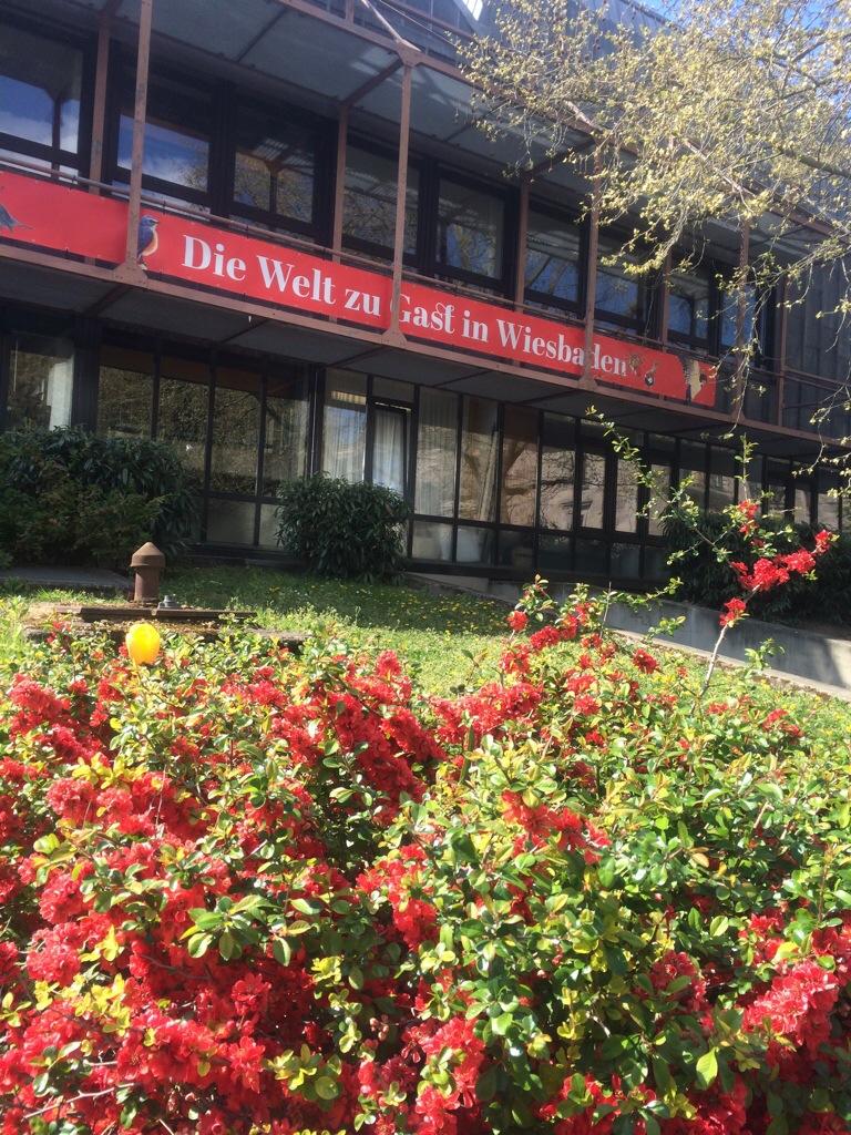 Blüten an der Rückseite des Staatstheaters Wiesbaden