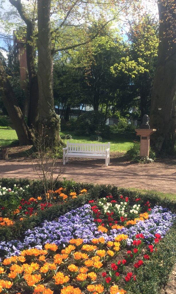 Blumenbeet im Kurpark Wiesbaden