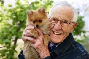 Dr. Rolf Spangenberg ist in den Ruhestand gegangen. Er schreibt weiterhin eine Kolumne bei my-pet. Foto: WZF/Spangenberg