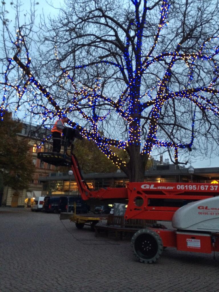 Und stundenlang auch der Baum zwischen Marktkirche und Lumen mit blauen und weißen Birnchen geschmückt